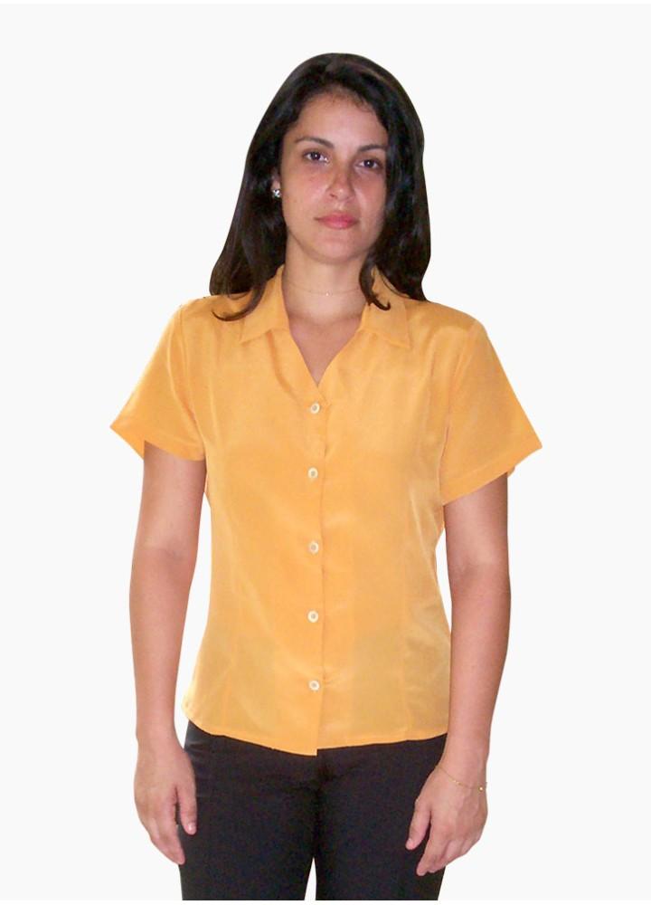 Blusa Feminina com Decote V e Gola